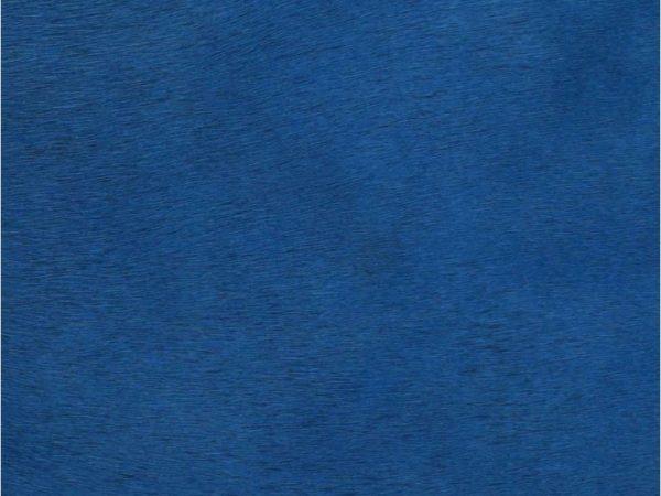 Peau-De-Vache-Bleue-Zoom
