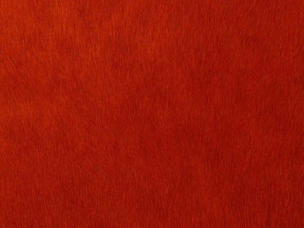 Peau-De-Vache-Rouge-A14-Zoom