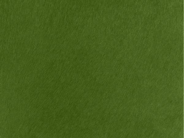 Peau-De-Vache-Vert-Bouteille-A17-Zoom