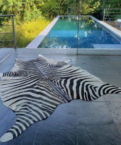 Peau-De-Zebre-piscine