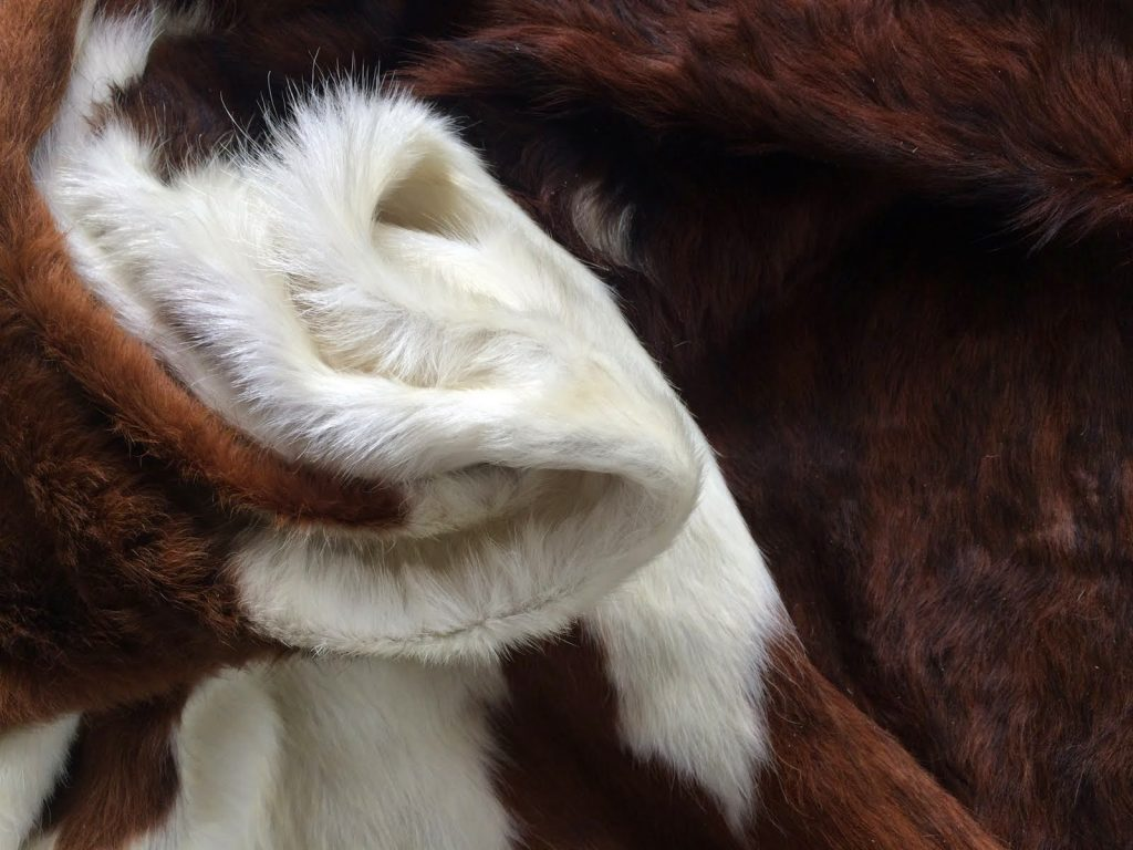 Peau-De-Vache-Blanche-Noisette